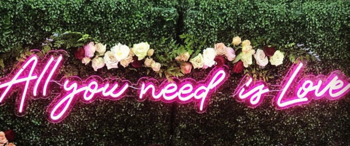 ALL YOU NEED IS LOVE-PINK-LARGE NEON SIGN