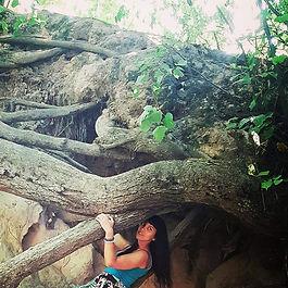 Nes drzewo str.jpg