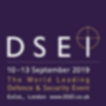 DSEI-2019