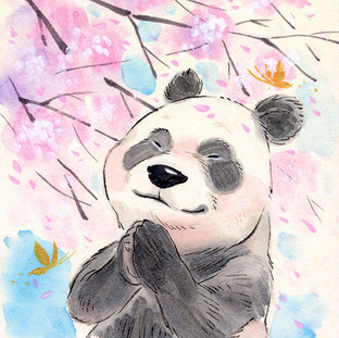 Sakura Wishes - Panda