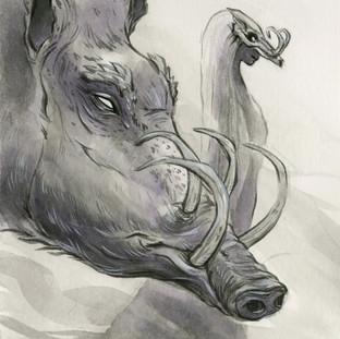 Insightful Boar