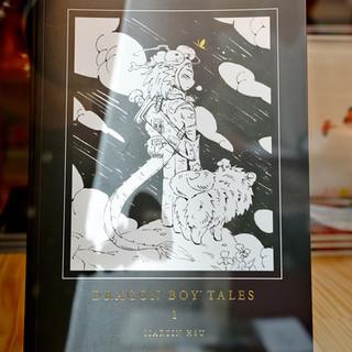 Dragon Boy Tales Book