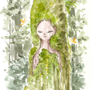 Forest Spirit - New Zealand