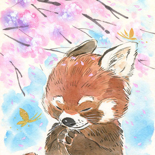 Sakura Wishes - Red Panda