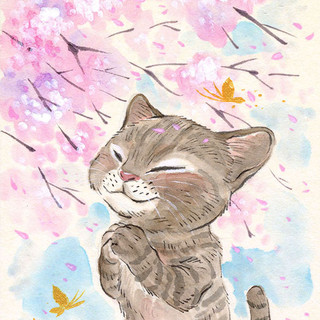Sakura Wishes - Cat