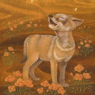 Coyote Pup in Poppy Dreams