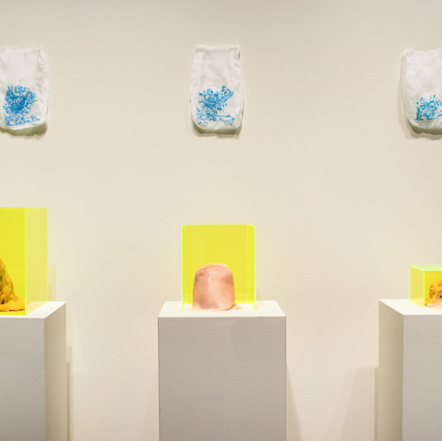 TrinityNARC: Installation view