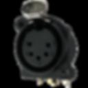 IO-XLR5-F-EH.png