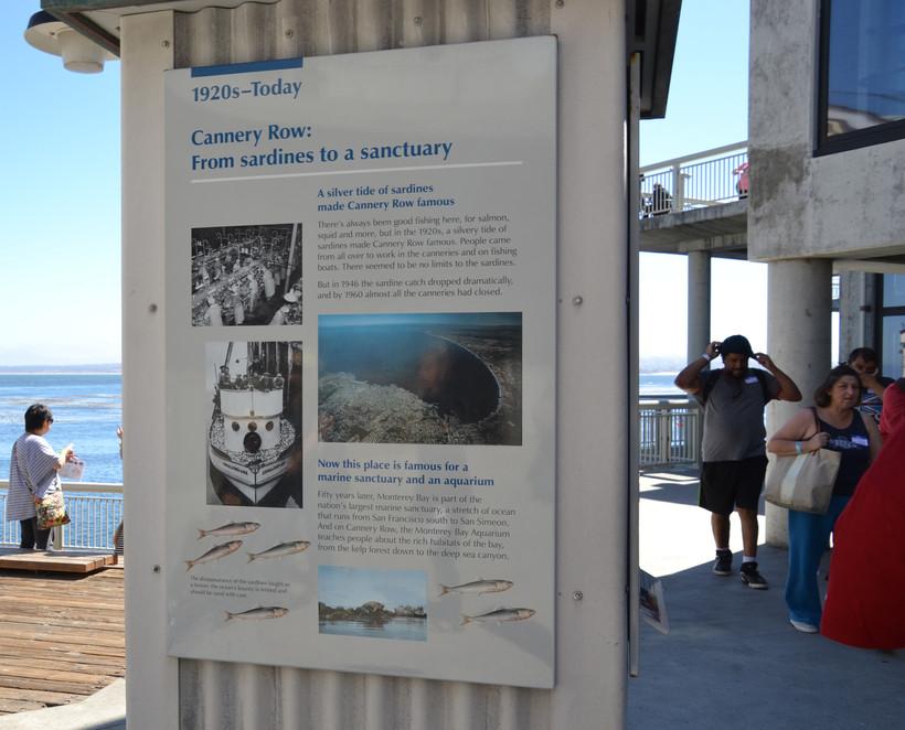 Monterey Trip 13.JPG