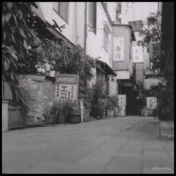 gallery2-21