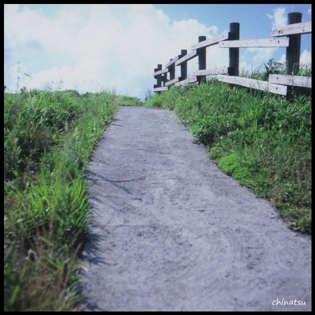 gallery4-10