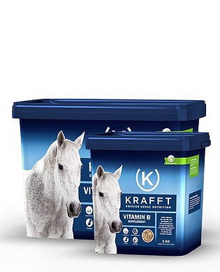 Krafft B-vitamin png.png