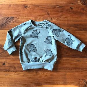 Raglan Pullover Bär Bio