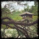 KYT0015 - Ginkaku-ji.JPG