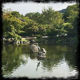 KYT0023 - Maruyama Park.JPG