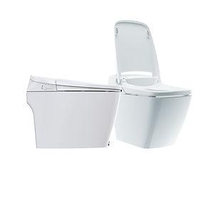 Toilet-Combo.jpg