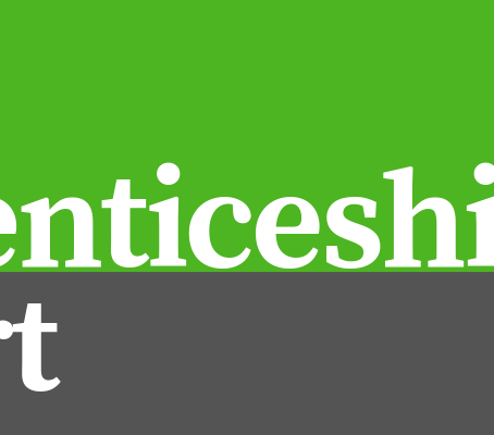 THE APPRENTICESHIP REPORT: First in a Series