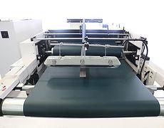 Pressing Conveyor Section