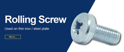 Rolling Screw