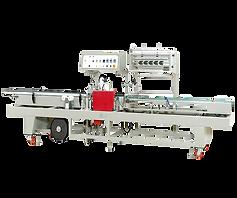 Side Sealer -Intermittent Motion TY-701-3000L-06