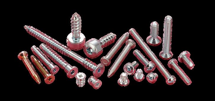 Machine Screw & Special Screw 機械螺絲