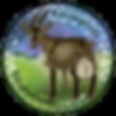 Alpesi kecske tenyészet