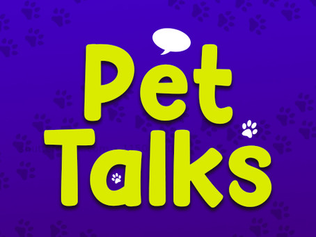 Pet Talks AR App Privacy Policy - Augmented Reality