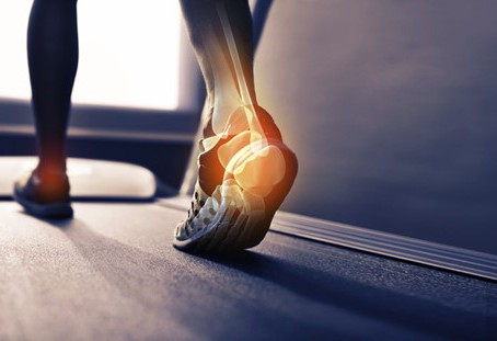 Ankle Anatomy: The 8 Different Types of Ankle Breaks You Can Sustain