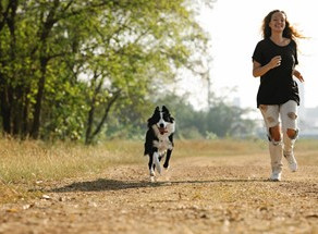 9 of the Best Ways to Exercise Your Dog: Outdoor & Indoor Options!