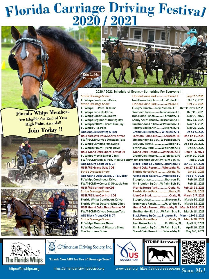 Florida Carriage Driving Festival 2020 -