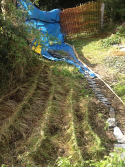 Ley Lines @ Lammas eco village