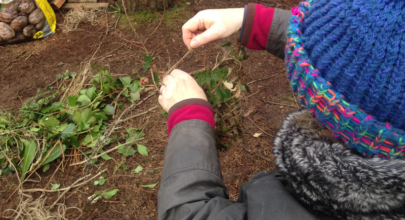 Learning to weave with nature