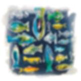 fish open 2 COMP.jpg