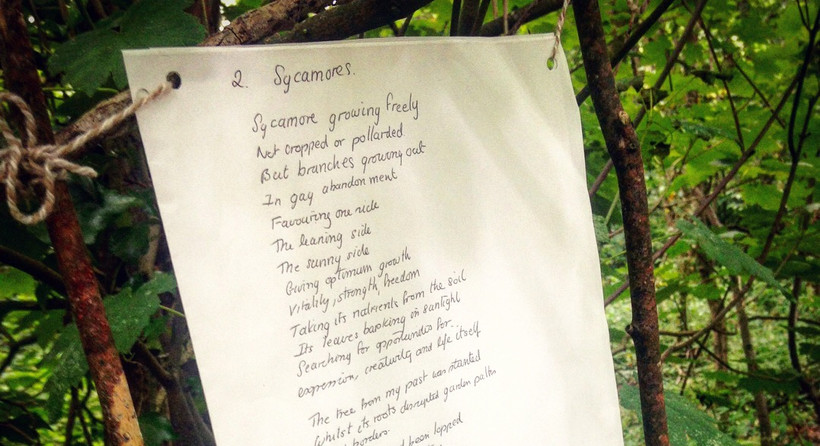 Poems for the trees