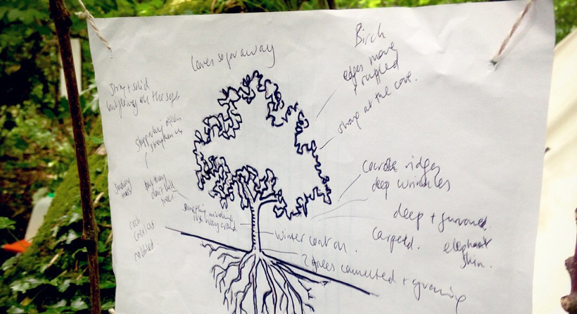 Writing poems for trees