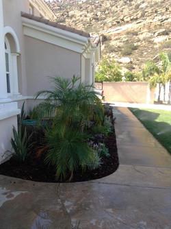 A Sandoval Tree Service 1