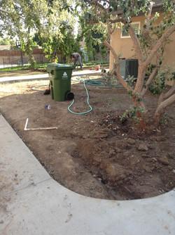 A Sandoval Tree Service 3