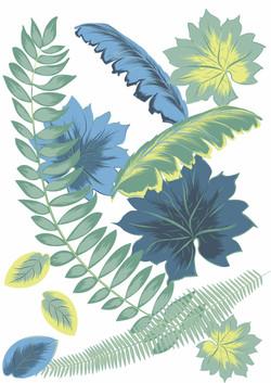 Illustration_Nature_CongoPlants