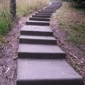 Christchurch's Best Steps