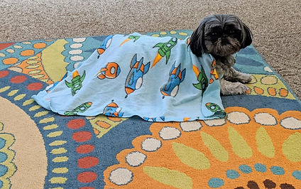 Jagger with blanket I gave him... dec. 2