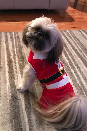Watson Pruett Christmas 2018.jpg