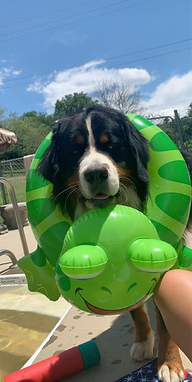 Sutton with pool float.jpg