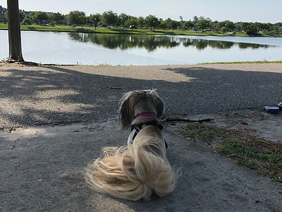 Emmie Bundy at lake_edited.jpg
