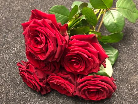 Single Roses.