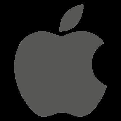 Reparar Auricular de iPhone