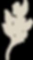 logotipo-vetor.png