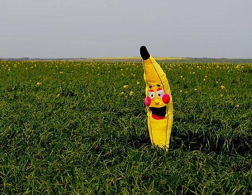 bananna_edited.jpg