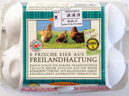 Eier aus Freilandhaltung, 6 Stück