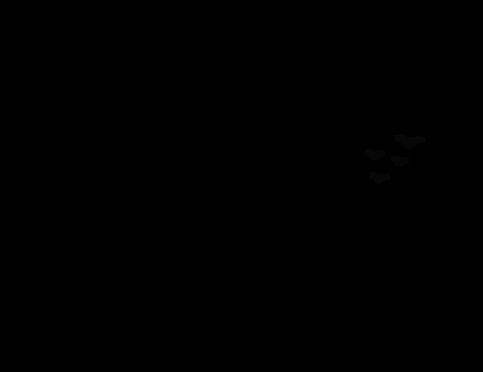 YogaLogo-Black.png