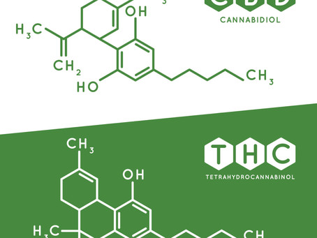 How Does CBD Oil Work For Managing Pain And Inflamation In The Body?